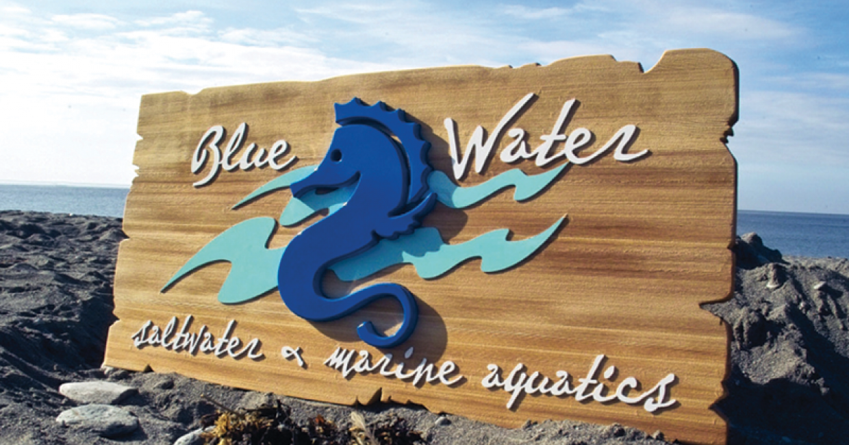 The Grain uses cedar to make these eye-catching signs – using a Pacer 25/15 HDS router