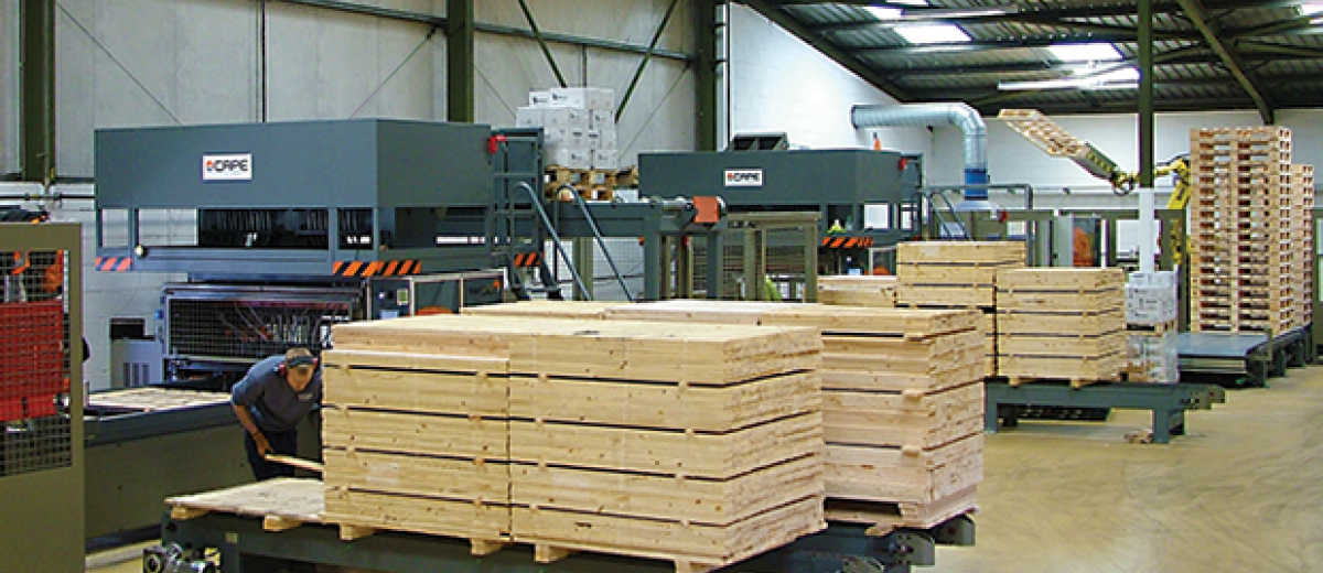 Precise extraction for new pallet line