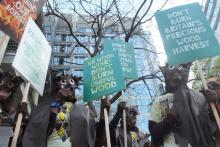 Norbord owls hoot the word at Biomass Awards