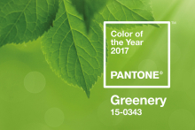 Greenery unveiled as Pantone's colour of the year 2017