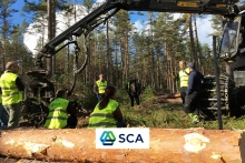 SCA Wood teach the teachers on timber production