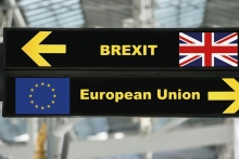 BFM outlines ramifications of no-deal Brexit