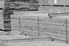 Softwood spearheads a timber import resurgence