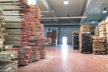 Softwood spearheads a timber import resurgence in 2020