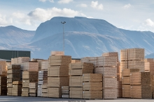 TTF finds softwood imports hold strong